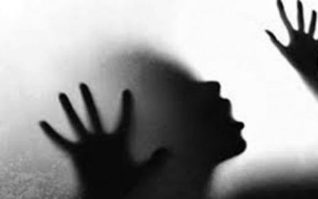 Sub-inspector booked for torturing maid, her brother