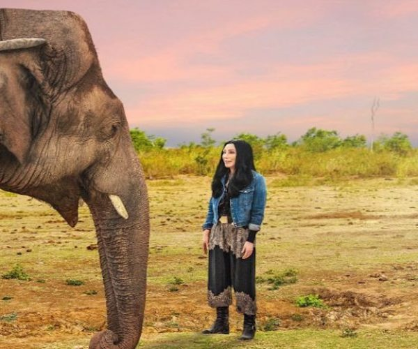 Cher Kaavan movie debut